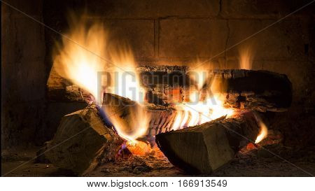 Detailed fire background. Wood Fire Burning in fireplace
