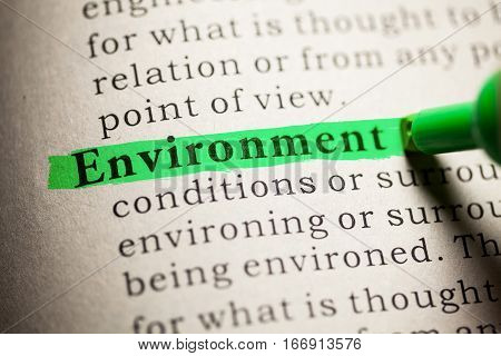 Fake Dictionary definition of the word Environment.
