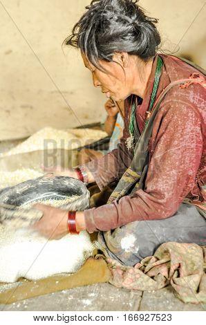 Corn Flour In Nepal