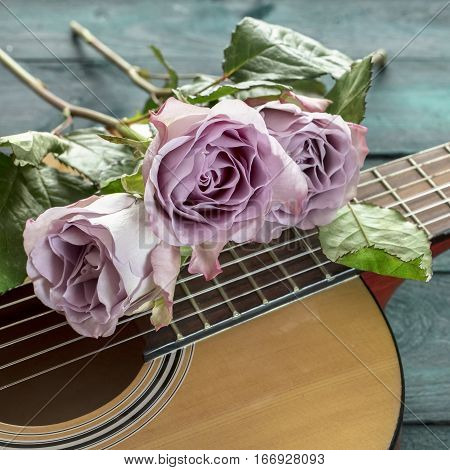 A square photo of a guitar neck with tender pink roses, on a dark wooden background