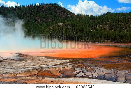 The Grand Prismatic Spring In The Midway Geyser Basin In Yellowstone National Park In Wyoming Usa