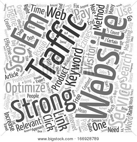 Increase Website Traffic with SEO Services text background wordcloud concept