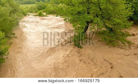 Disastrous rived flooding the forest, disaster concept