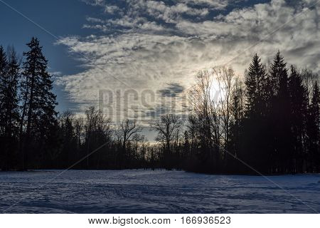 winter landscape of the forest park with a snow glade and the cloudy sky with a sunset