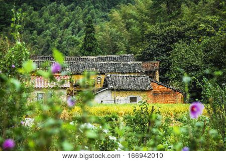 The farmhouse with countryside scenery in autumn