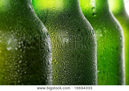 Beer in bottle on a white background