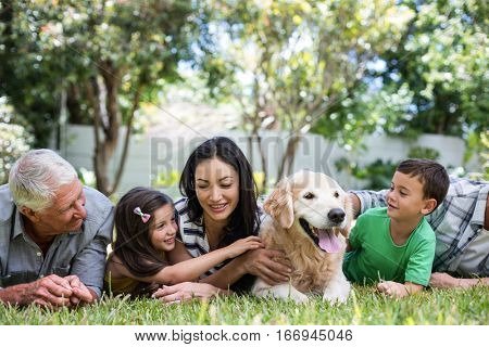 Cheerful extended family lying on front in the park
