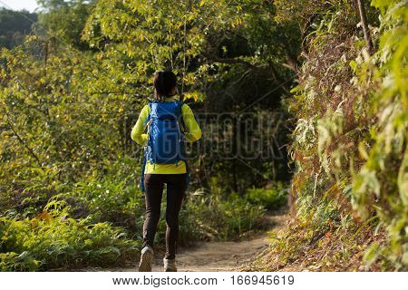 young woman hiker hiking on forest mountain