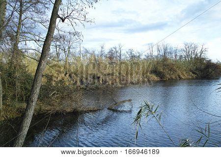 bozzi saudini a little lake in Sarzana near La Spezia