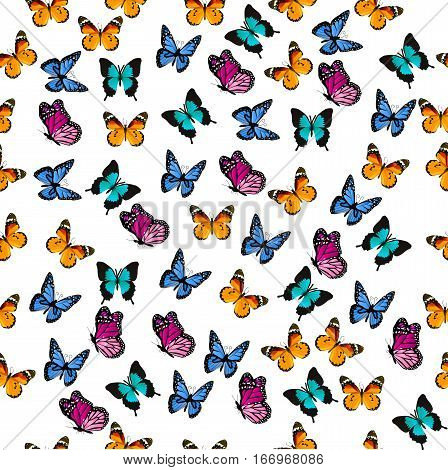 Very high quality original trendy vector seamless pattern with colorful butterfly