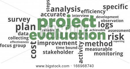A word cloud of project evaluation related items