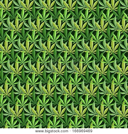 Green marijuana background vector illustration. marihuana background leaf pattern repeat seamless repeats. Marijuana leaf background herb narcotic textile pattern. Different vector patterns. poster