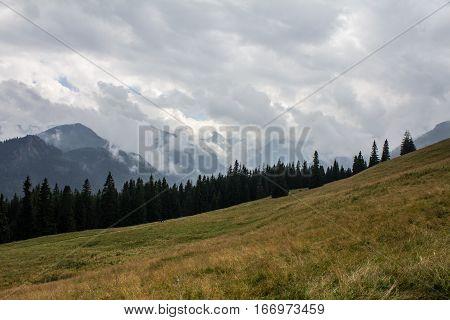 Widok z Rusinowej polany, Tatry w chumrach