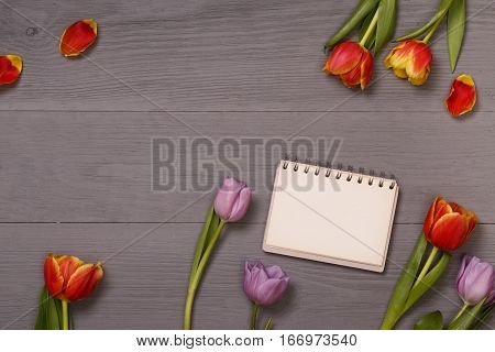 Lilac and red tulips and banner space for text in the lilac wooden table. Banner template layout mockup for Woman Day, Valentines Day and Teacher's Day. Photo for posts, blogs, advertising and news.