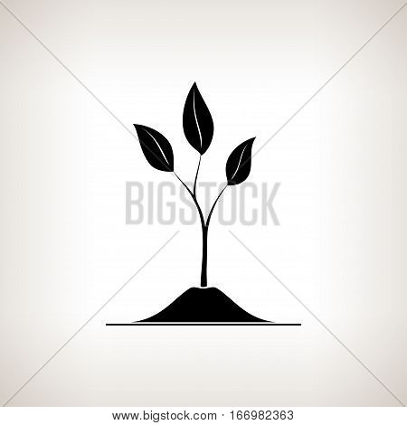Sprout ,a Young Shoot on a Light Background, Plant Shoot Growing Up out of the Land, Black and White Illustration