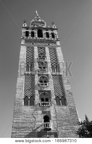 Sevilla (Andalucia Spain): the Giralda belfry of the cathedral. Black and white