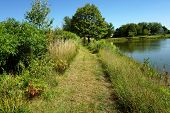 A pathway beside a small, man-made lake in Joliet, Illinois during September. poster