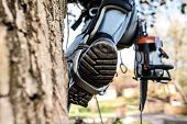 Close up of leg of lumberjack with a chainsaw and harness prepared for pruning a tree. A tree surgeon, arborist climbing a tree in order to reduce and cut his branches. poster