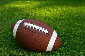 American football isolated on top of green grass poster