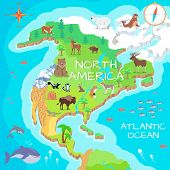 North America isometric map with flora and fauna. Cartography concept with nature. Geographical map with local fauna. North America continent with mammals and sea life. Vector illustration for kids poster