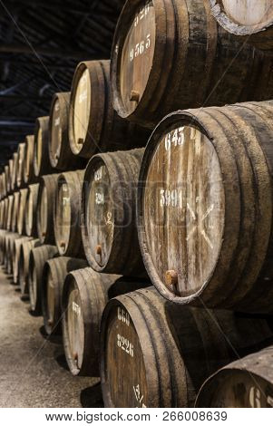 Row of wooden porto wine barrels in wine cellar Porto, Portugal.