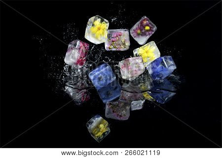 Small Flowers Frozen Into Ice Cubes Fall And Bounce Onto A Black Surface