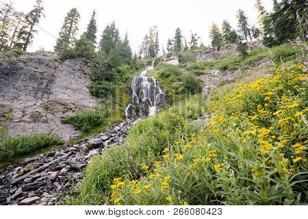Vidae Falls Located Along The Rim Drive In Crater Lake National Park In Oregon. Wildflowers Near The