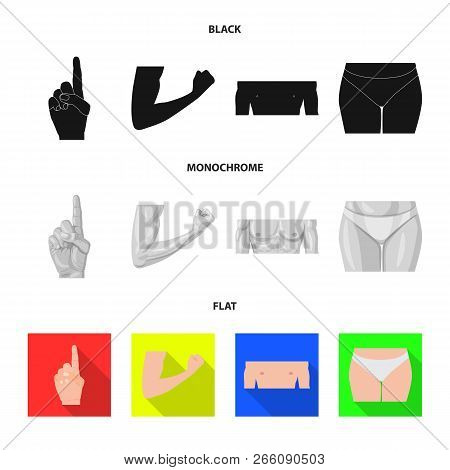 Vector Illustration Of Human And Part Symbol. Set Of Human And Woman Stock Symbol For Web.