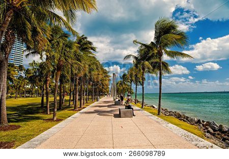 Miami, Usa-february 2, 2016: Idyllic Street With Green Palms. South Pointe Park In The South Beach A