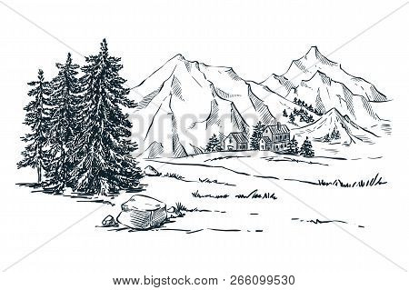 Mountains, Spruce And Pine Trees Landscape, Vector Sketch Illustration. Hand Drawn Winter Hills And