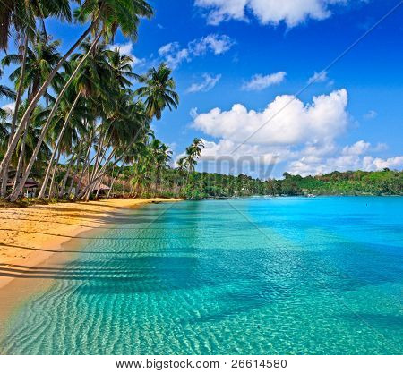 Paradise nature, sea water, summer and hotel house on the tropical beach