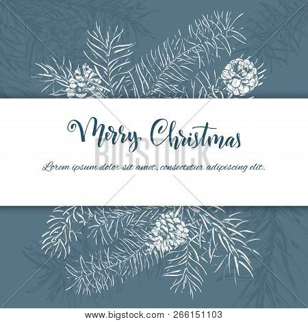 Christmas Sketch Hand Drawn Illustration With Pine Tree Branches And Cones.vector Illustration For Y