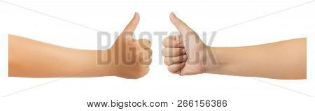 Double Front And Back Human Hand In Showing One Thumb Up Or Like Icon In Trendy Gesture Isolate On W