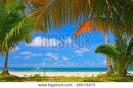 Palm tree frame around summer beach, family rest