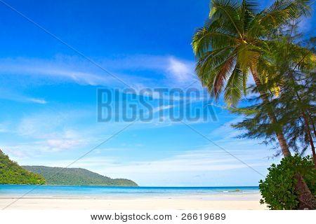 Beautiful beach and waves of Sea