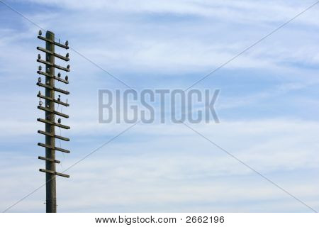 Old Telegraph Wire Background Image