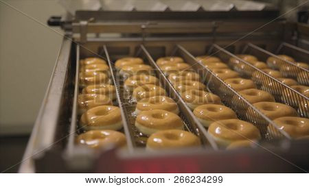 Procedure Of Making Donuts In A Small Town Donut Bakery - Donuts Frying In A Deep Fryer. Scene. Proc