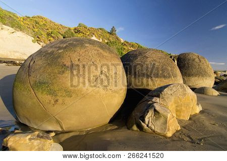 The Moeraki Boulders Are Unusually Large And Spherical Boulders Lying Along A Stretch Of Koekohe Bea