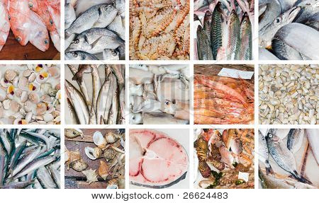 collection of images of fresh fishes
