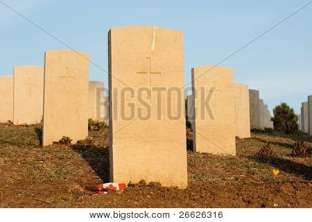 row of tombstones in cemetery war