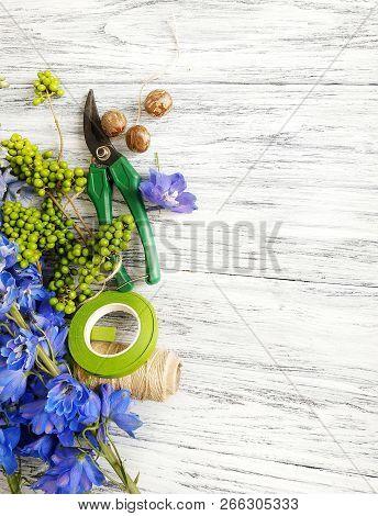 Floral Background: Blue Color Delphinium, Nuts And Florist Tools On Wooden Background. Florist At A
