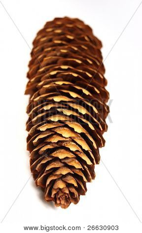 Cone on white background