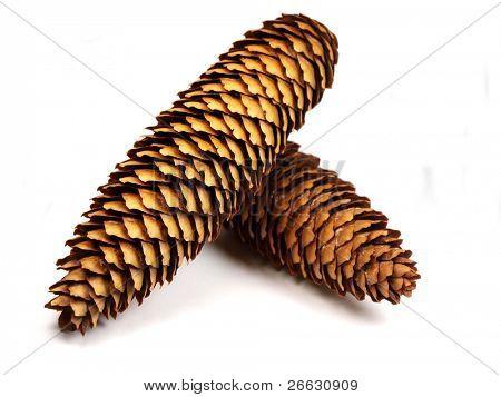 Cones on white background