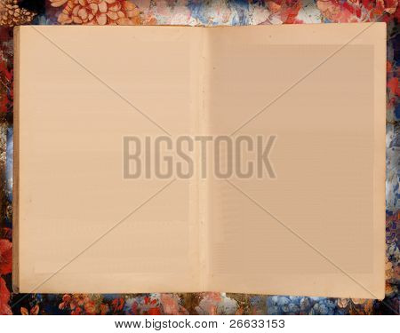 Blank book isolated on grunge background