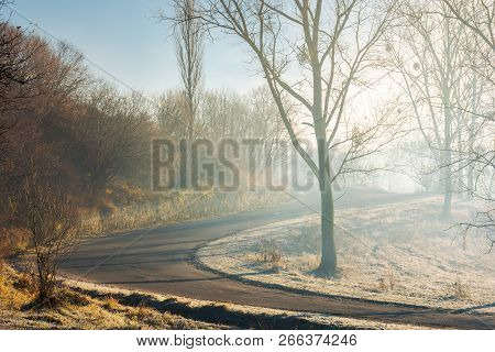 Serpentine Uphill Through Forest In Morning Mist. Lovely Transportation Scenery In November