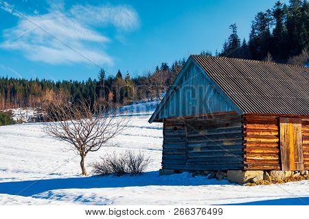 Abandoned Barn In Carpathian Mountains. Beautiful Sunny Winter Weather