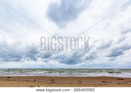 Baltic Sea With Driftwood On The Beach