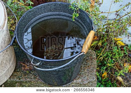 Black Metal Bucket With Water On A Concrete Table In Green Grass