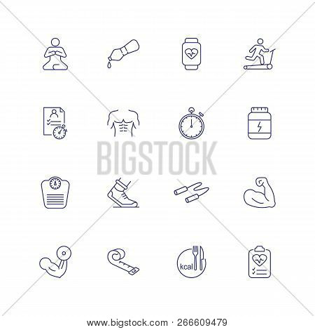 Fitness Icons. Set Of Line Icons On White Background. Gym, Exercise, Sports Equipment. Training Conc