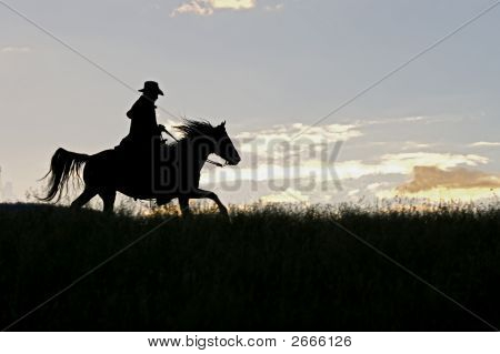 Cowboy Silhouette (See Others In My Portfolio/Lightbox)
